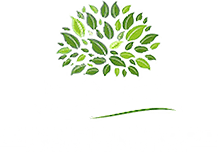Champion Wood Animal Hospital